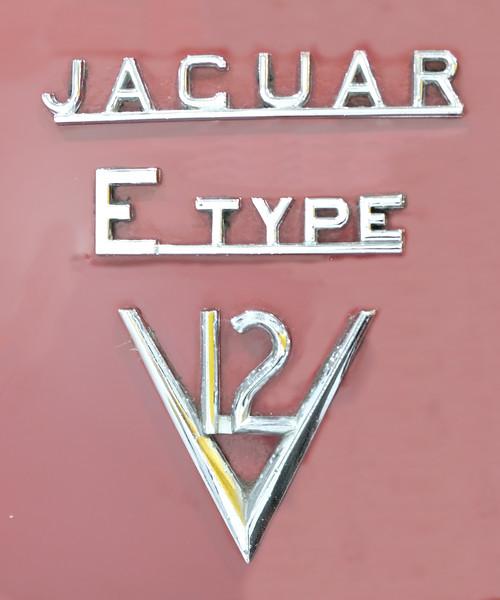 LogoJaguar ETypeV12.jpg