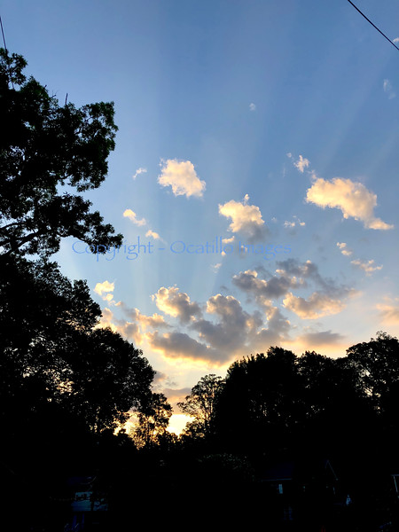 Sky Dasn.jpg