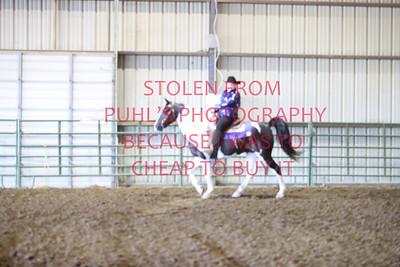 Thursday - Western Saddle Horse Pleasure 17 & under