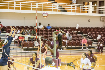 AAMU 2015 Volleyball