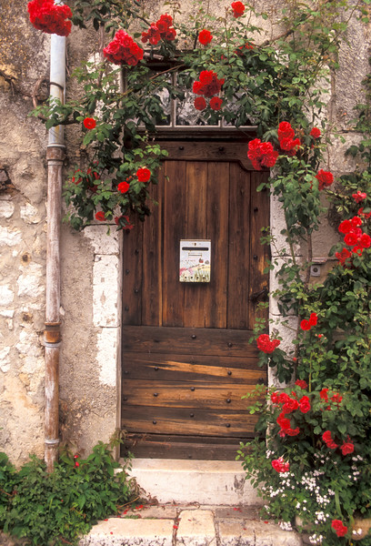 Red Rose Doorway