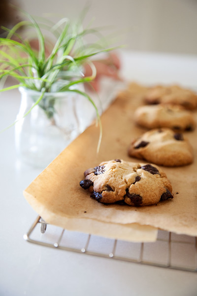 Vegan Chocolate Chip Cookies Cooling on Baker's Rack