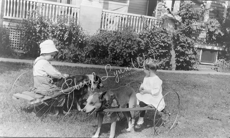 Boy-Girl-Cart-Dogs-2-WM.jpg