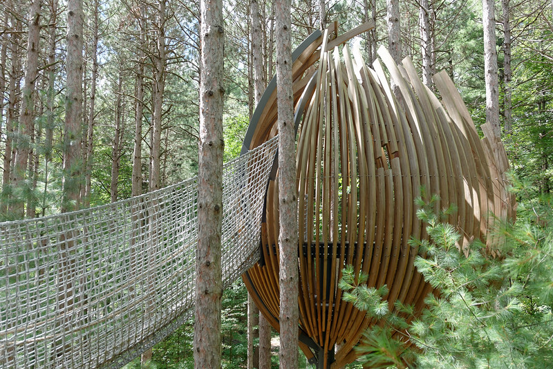 Dow Gardens - Whiting Forest Canopy Walk (7).jpg
