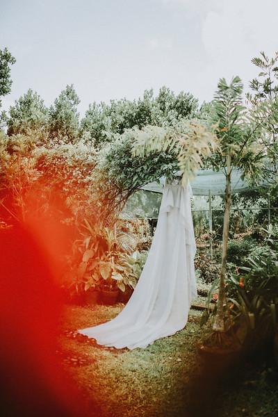 Teddy Sylvia Wedding-70.jpg