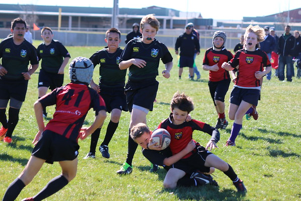 Rugby  3-1-2015