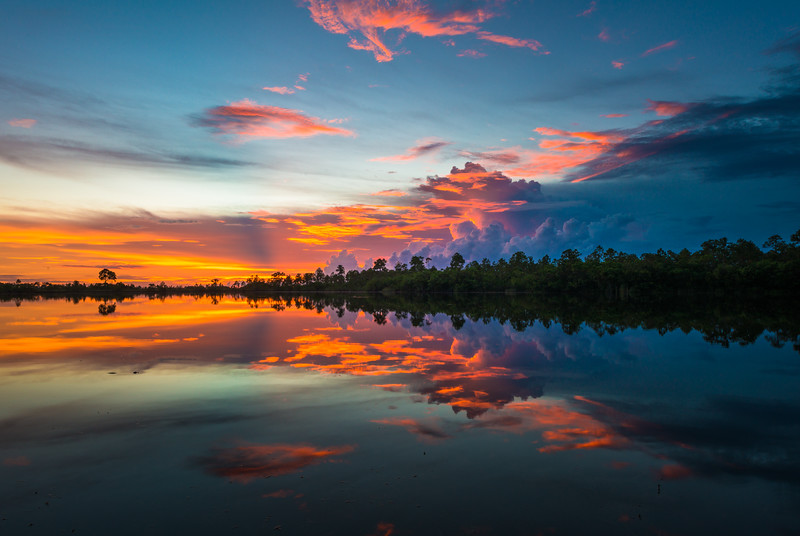 Everglades (24 of 60).jpg
