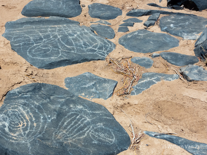 20201215 Petroglyphs at The Growcery, Northern Cape