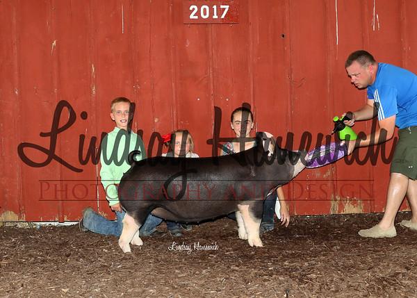 Wednesday - Open Pig Shpw