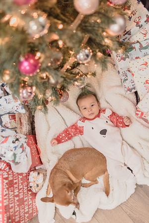 Christmas | Velasquez Family 2019