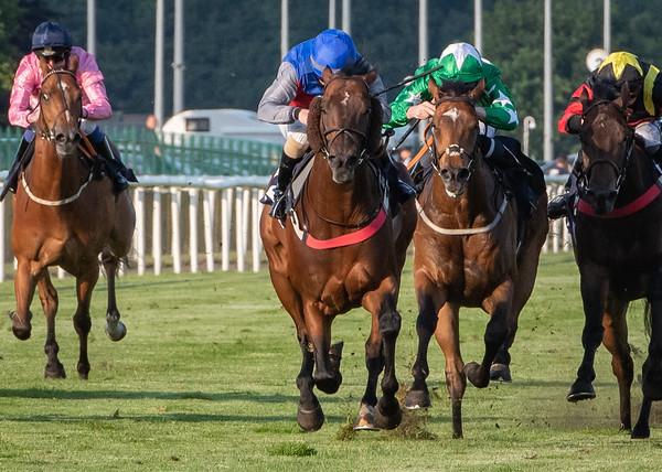 Race 5 - Giogiobbo