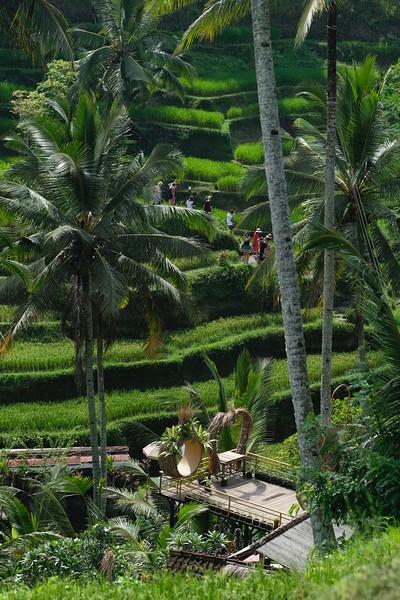 Trip of Wonders Day 11 @Bali 0058.JPG