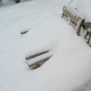 March 16, 2020 - Lots of Snow