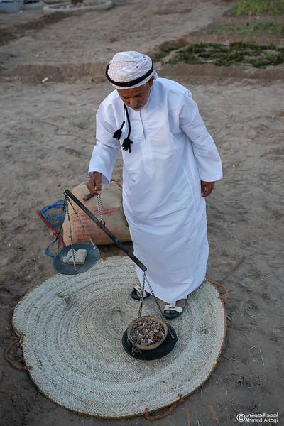 Thamrait 094 - frankincense - Dhofar.jpg