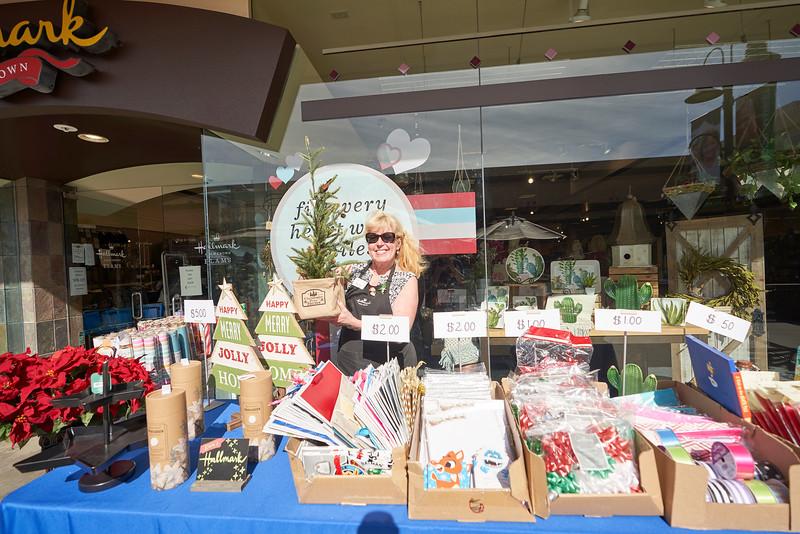 Grossmont Center Shop Local Market, Hullabaloo & Twinkle Time 2019 139.jpg