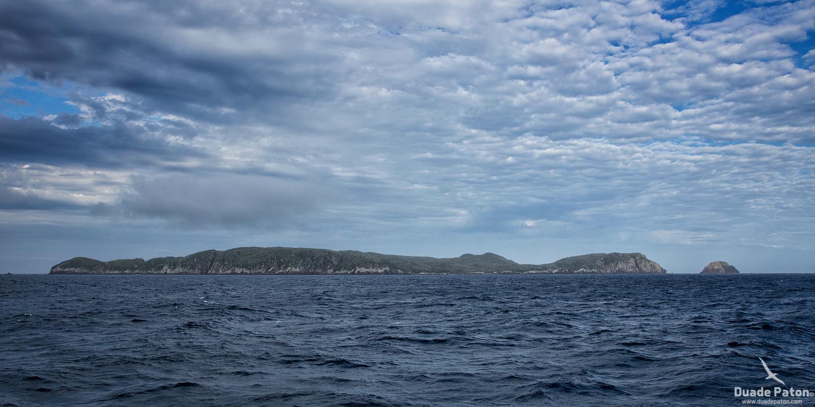 Snares Island, NZ