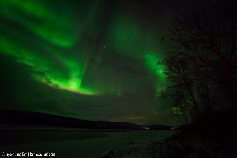 Nov.12_Northern Lights-6106833.jpg