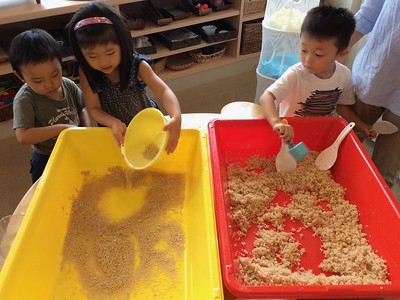 ELC Rice Project