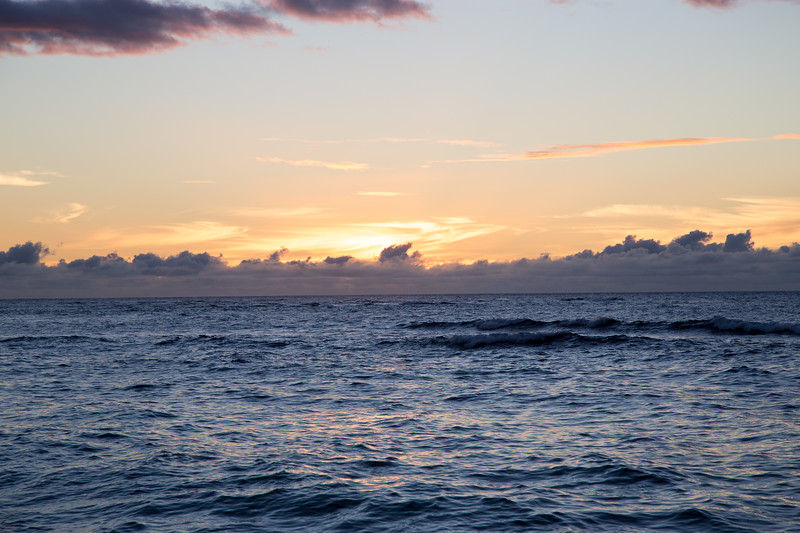 Hawaii-North Shore 2017-9051.jpg