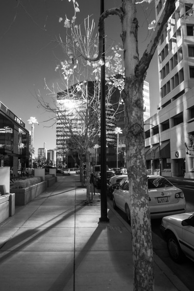 Stroll downtown San Jose - January 27th 2013