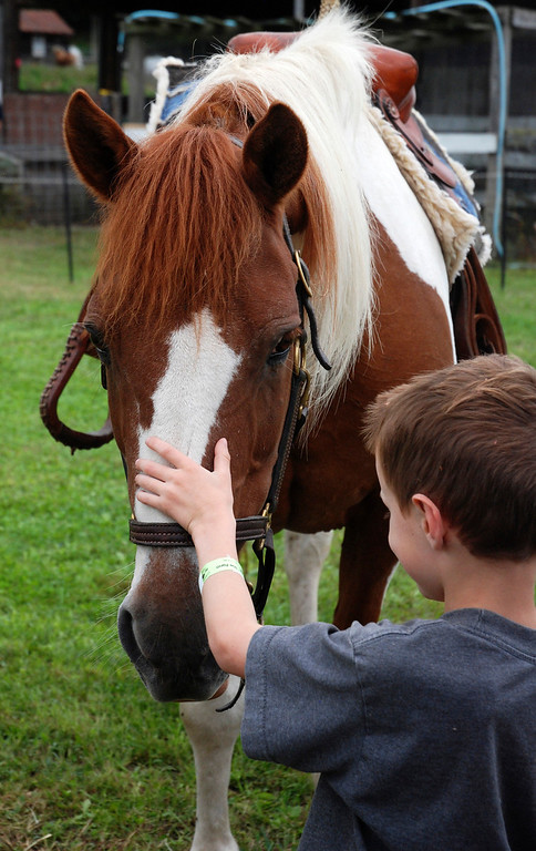 . Kayla Rice/Reformer Weston Clark, 6, of Ashfield, Mass. greets a horse at Gaines Farm in Guilford.