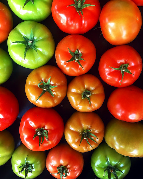Coutts Country Flavours Store tomatoes.jpg
