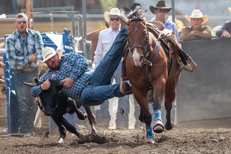 2019 Rodeo D (509 of 673).jpg