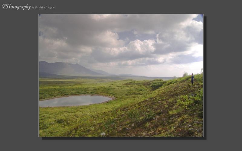 My Alaska 12-08-026.jpg
