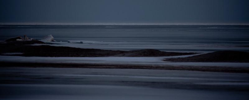 2011 swan migration aylmer (8 of 51).jpg