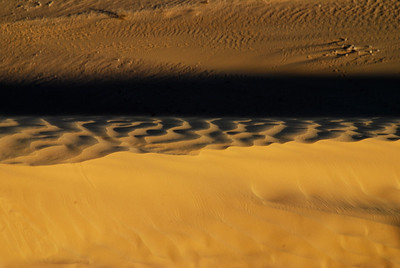 desert forms two
