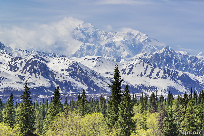 Denali Star Train-6109230-Juno Kim.jpg