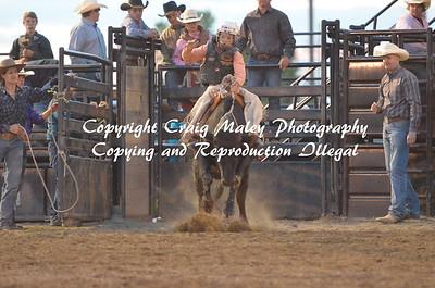 1st Go Steers Saddle Bronc 05-22-15