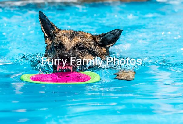 Saturday Splash 5