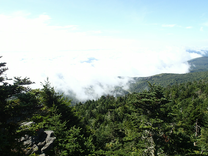 Grandfather Mountain - Daniel Boone Scout Trail  - Calloway Peak