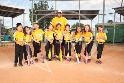 St Gregory Tigers Lady Softball