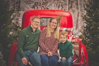 Adrienne Harmon Christmas Mini