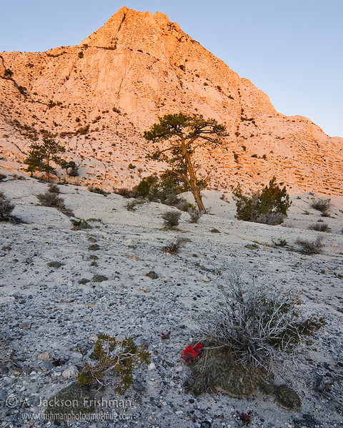 Dawn light on Crystal Peak, Utah west desert, April 2011.