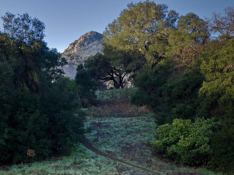 A blended image in Malibu Creek Park.