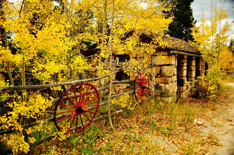 Fall Colors 2011-3.jpg