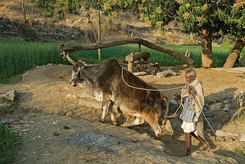 INDIA2010-0213A-214A.jpg