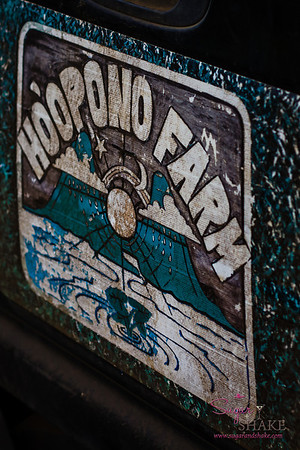 Ho'opono Farm is located in West Maui, on the hillside above Kapalua. © 2013 Sugar + Shake