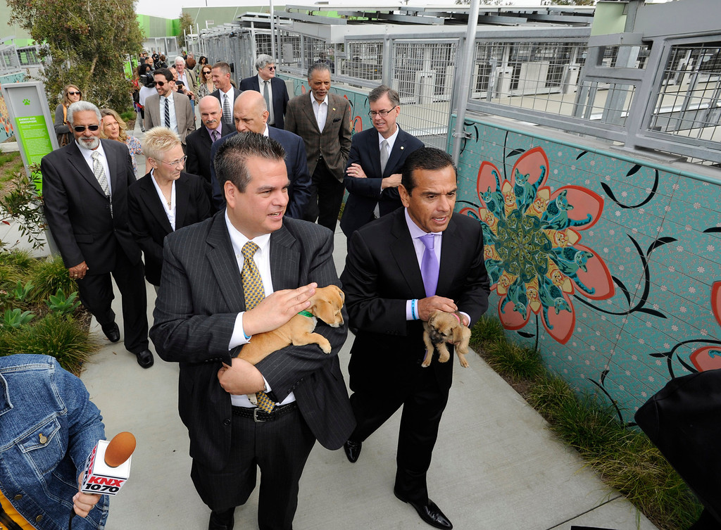 . (l-r) Mark Salazar takes Mayor Antonio Villaraigosa on a tour of the news shelter. The South Los Angeles Animal Services Center officially opened today at 1850 West 60th Street. Villaraigosa and other city officials cut a ribbon and went on tours to see the state of the art facility that showcases animals in a way that is humane, clean and allows pets to meet potential new families. The outdoor kennels reduce disease transmission and noise, while other animals like rabbits and reptiles are given more prominence in the location where they are viewed.  Los Angeles, CA 4/4/2013(John McCoy/Staff Photographer