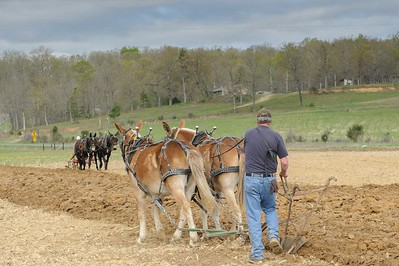 2016 04 16 Plow Day