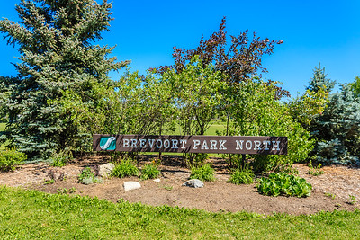 Brevoort Park North