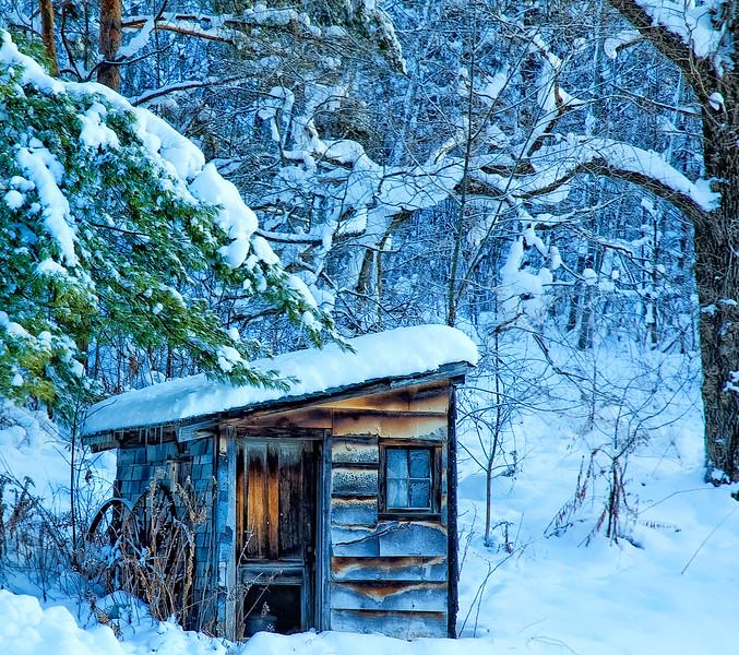 Winter scenes-8.jpg