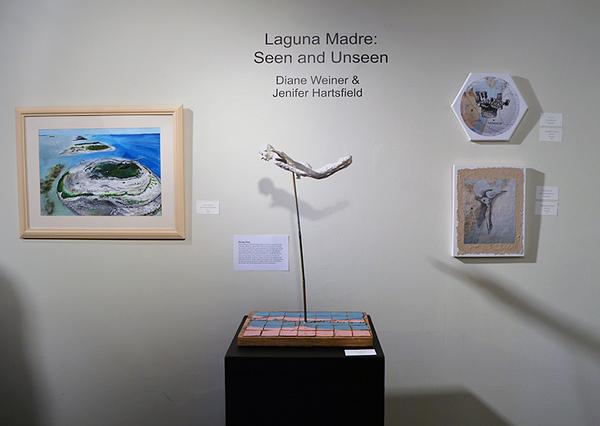 p-Art Center Open House-Artist-in-Residence-Program-Laguna Madre-Seen-Unseen_0862.jpg