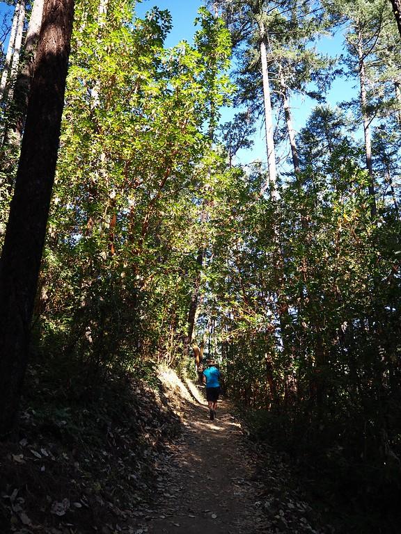 Jacksonville Woodlands Trails Oregon
