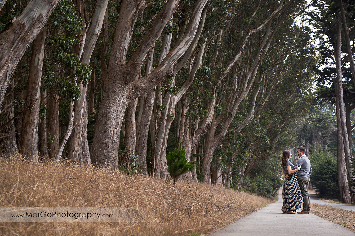 engagement session at Lover's Lane at the Presidio in San Francisco - couple standing in the aisle