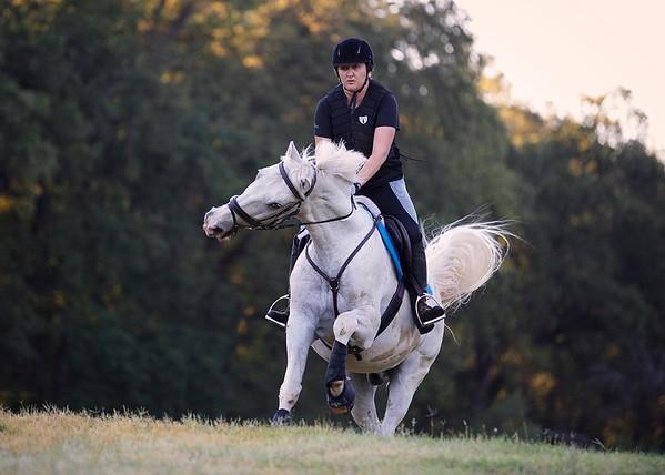 HC Equestrian Camp 2017