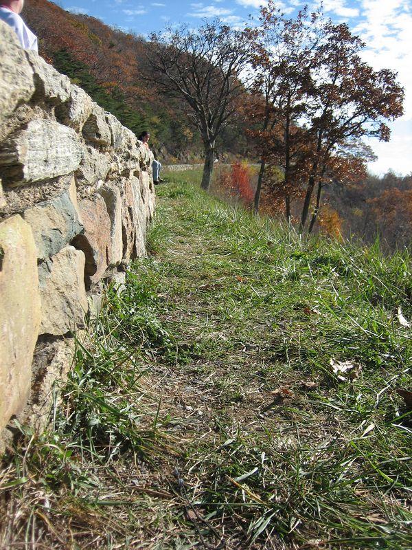 Pretty Wall